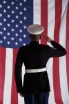 veterans pic